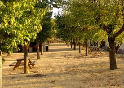 Zona acampada en El Freginal